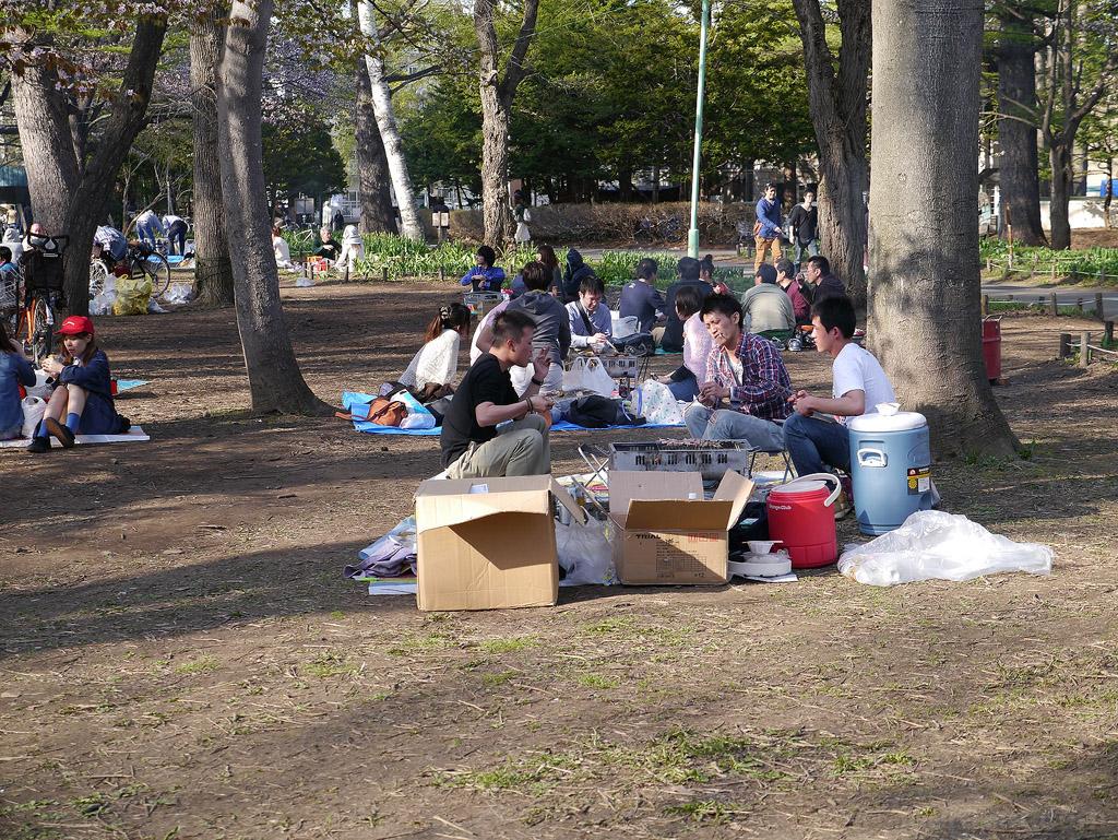 hokkaido_389