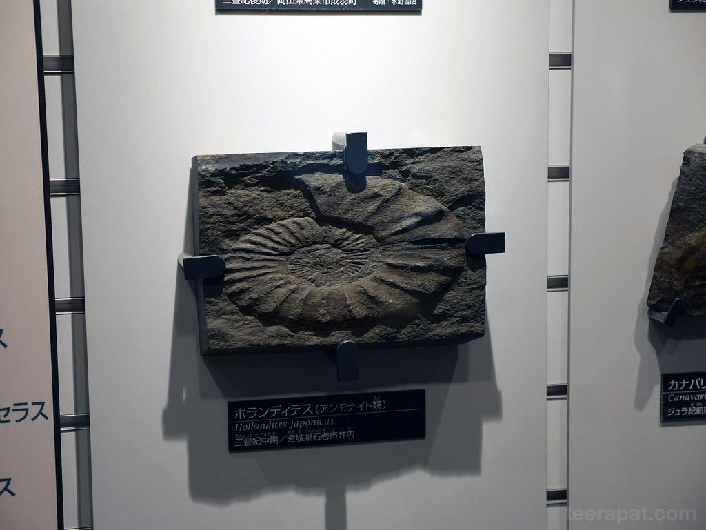 Japan14_785