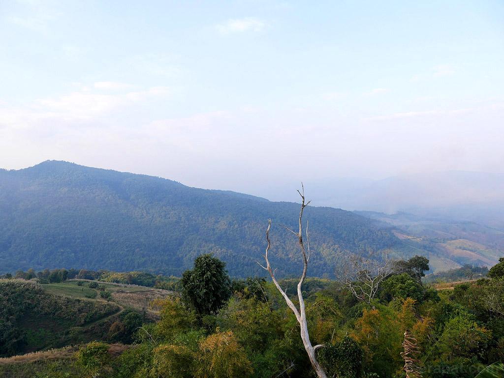 ChiangRai_131
