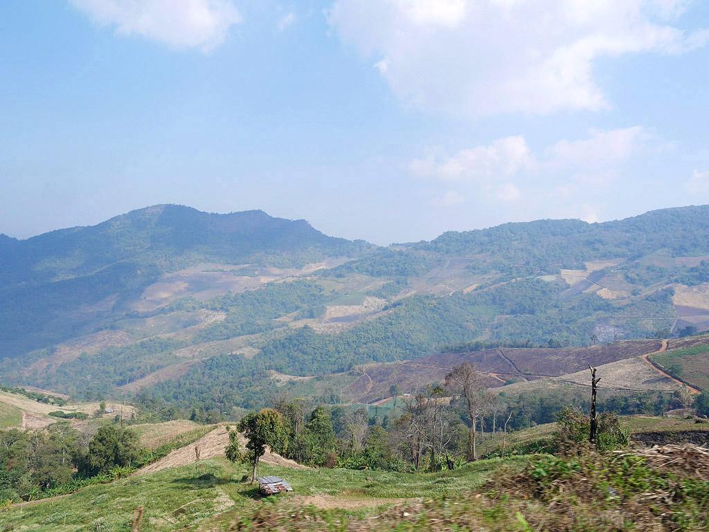 ChiangRai_184