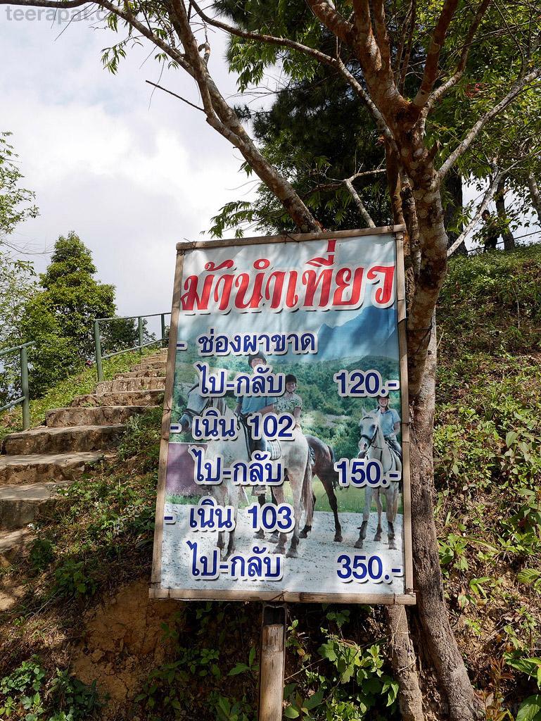 ChiangRai_207
